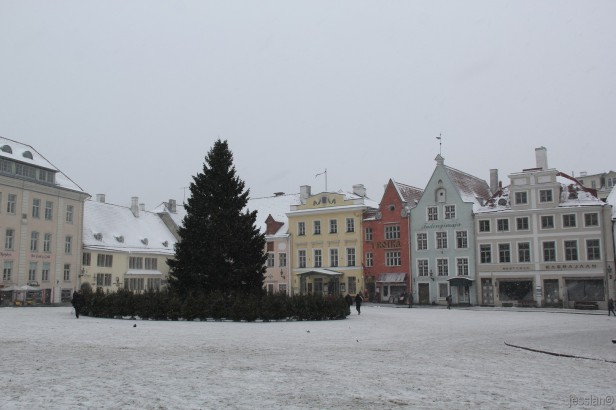 Tallinn (2)